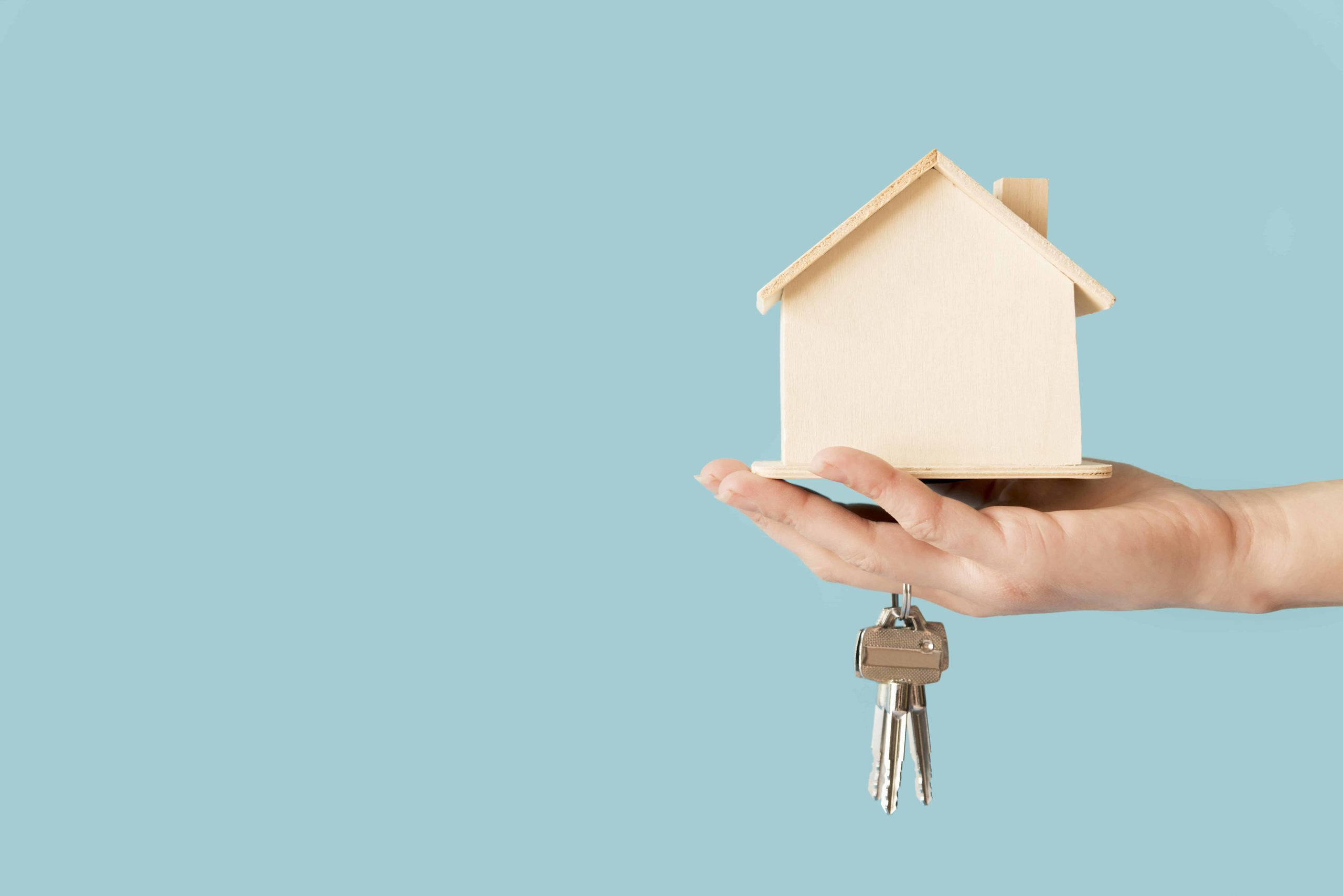 Louer ou acheter un terrain pour installer une tiny house