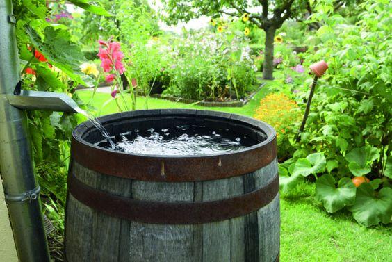 Gestion de l'eau en tinyhouse